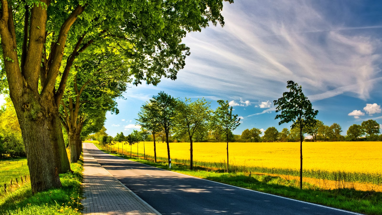 Sunny day images hd